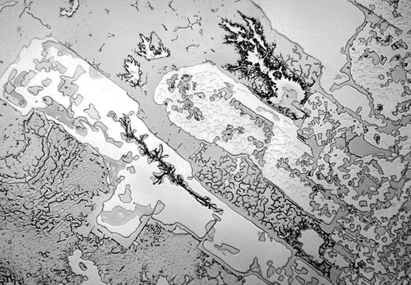 Những hình ảnh chưa từng thấy về nước mắt con người dưới kính hiển vi: Quái dị hơn cả chúng ta tưởng tượng - Ảnh 8.