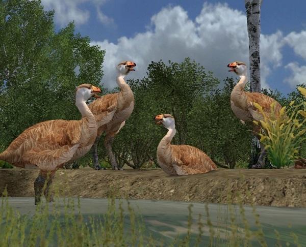 Những loài động vật tuyệt chủng vì sự thiếu hiểu biết của loài người - Ảnh 9.