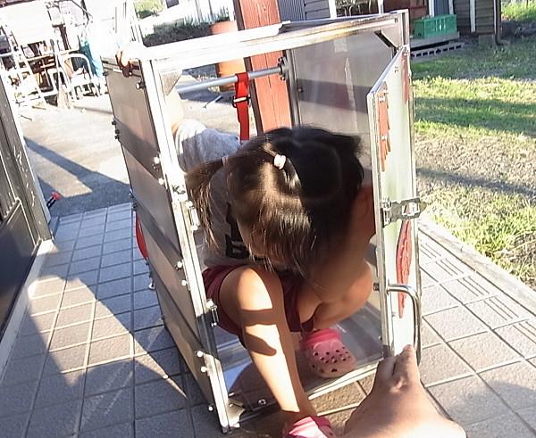 Chiều lòng con gái cưng, ông bố Nhật Bản chế tạo ra Nezuko Box khiến cộng đồng Kimetsu No Yaiba phát sốt - Ảnh 3.