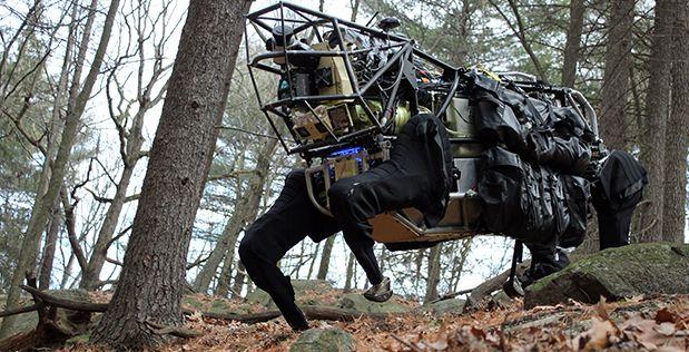 Loài sóc trở thành hình mẫu để Quân đội Mỹ học hỏi nhằm thiết kế robot trong tương lai - Ảnh 5.