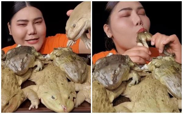 Làm clip ăn Mukbang trên sóng, nữ streamer khiến người xem khiếp sợ, chuyển kênh khi ăn ếch luộc nguyên con - Ảnh 3.