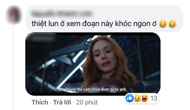 Netizen Việt bùng nổ vì WandaVision tập 8: Cảm động muốn khóc, tình tiết chấn động không thể ngờ! - Ảnh 6.