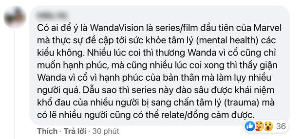 Netizen Việt bùng nổ vì WandaVision tập 8: Cảm động muốn khóc, tình tiết chấn động không thể ngờ! - Ảnh 11.
