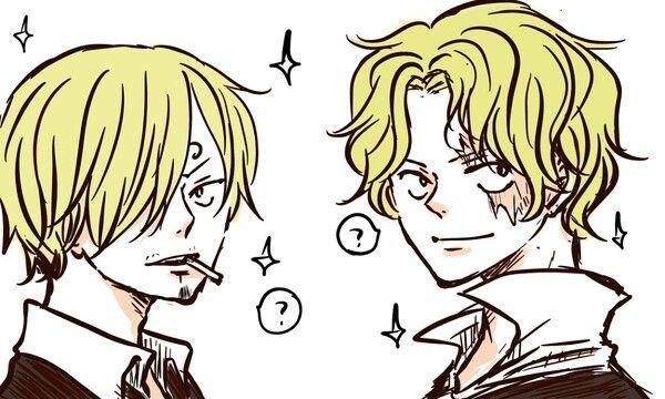 One Piece: Top 10 bí mật nhiều fan lâu năm cũng chưa biết hết về anh trai Luffy, số 5 gây bất ngờ lớn - Ảnh 2.