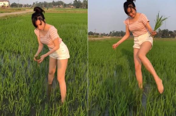 Hớ hênh vòng một gợi cảm khi đi thu hoạch lúa, bà Tưng bất ngờ gặp vô số chỉ trích - Ảnh 3.