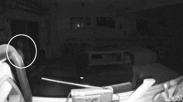 Lắp camera giám sát, chàng trai hoảng hồn khi thấy bóng ma và âm thanh lạ vào lúc 3h sáng - Ảnh 2.
