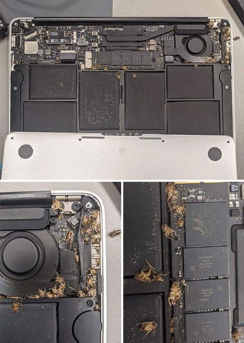 Những hình ảnh kinh dị về máy tính khiến ai cũng phải rùng mình - Ảnh 11.