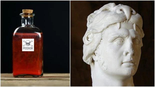 Vua độc dược Mithridates: Cha đẻ của phương pháp lấy độc kháng độc tưởng chỉ có trong truyền thuyết - Ảnh 3.
