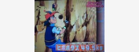 Không phải Pikachu hay Pokémon khác, Ash Ketchum mới chính là kẻ gánh team đúng nghĩa đen? - Ảnh 5.