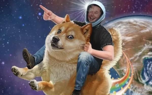 Trước khi khiến giá Bitcoin rớt thảm, Elon Musk hỏi cộng đồng Tesla có nên chấp nhận thanh toán bằng Dogecoin không - Ảnh 2.