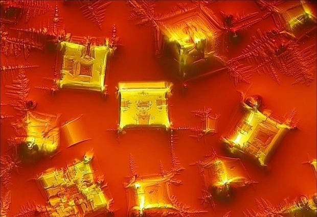 Những đồ vật được phóng đại qua kính hiển vi Photo-11-161996564623410105977
