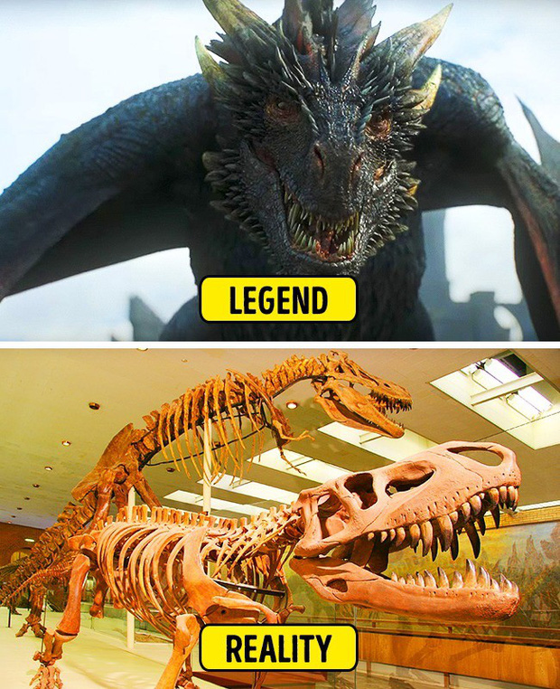 Sự thật về 8 con quái vật trong huyền thoại dưới góc nhìn khoa học (P.1) - Ảnh 4.