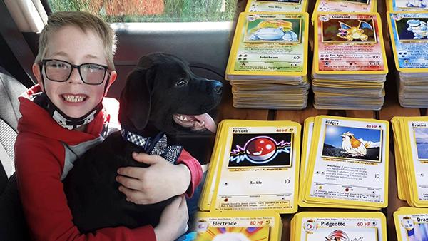 """Bán bộ thẻ bài Pokémon, cậu bé 8 tuổi """"hùn"""" hơn 16 triệu đồng để chữa bệnh cho thú cưng - Ảnh 5."""