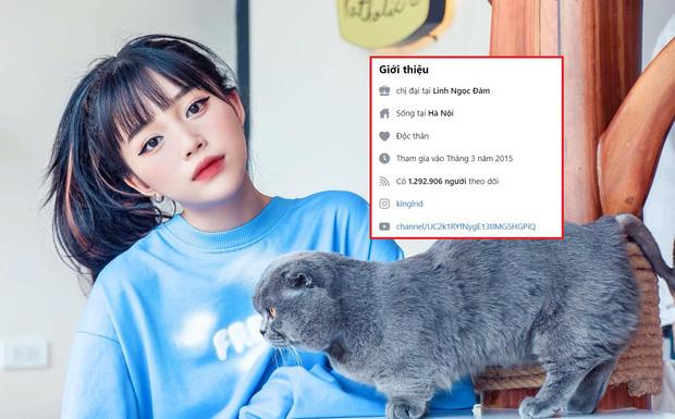 Liên tiếp bị report khiến tài khoản Facebook hàng triệu followers bị khóa, Linh Ngọc Đàm tuyên bố nghỉ chơi - Ảnh 1.