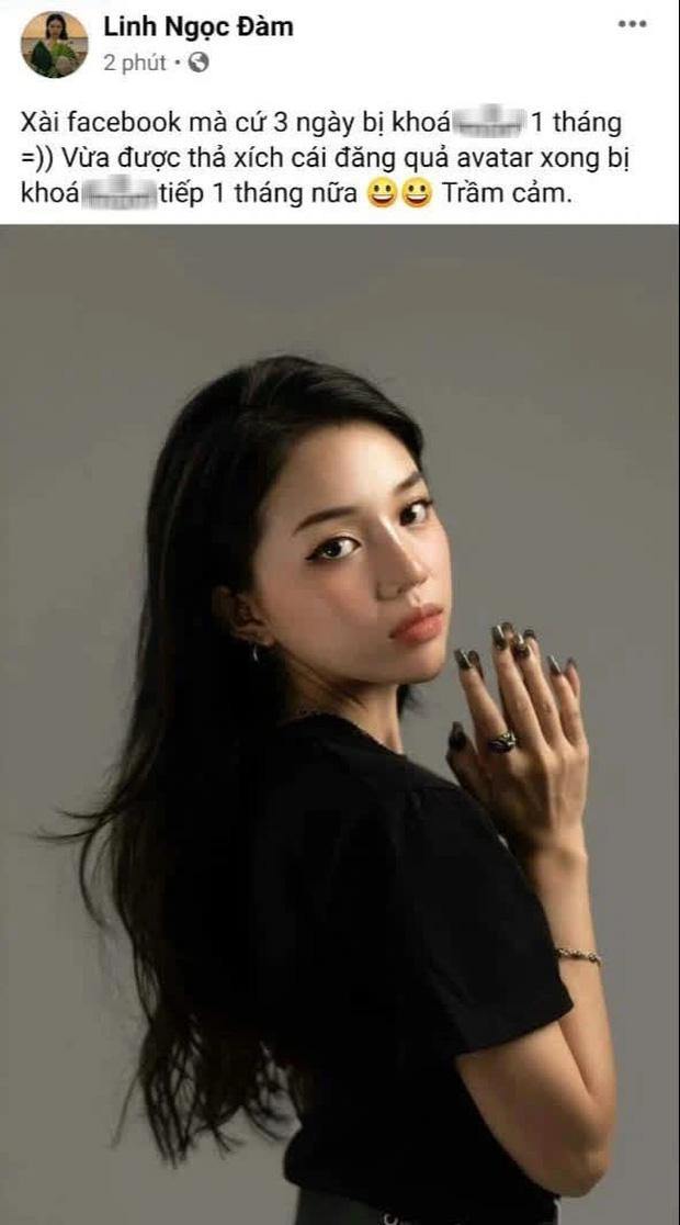 Liên tiếp bị report khiến tài khoản Facebook hàng triệu followers bị khóa, Linh Ngọc Đàm tuyên bố nghỉ chơi - Ảnh 3.