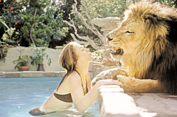Thành viên ekip bị sư tử nhai đầu, nữ chính bị vồ suýt mất thị giác, cả trăm người bị thương trong bộ phim nguy hiểm nhất lịch sử - Ảnh 6.