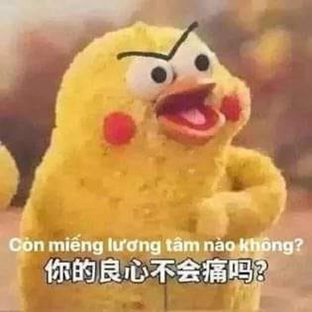 Meme chú gà Còn miếng lương tâm nào không? gây sốt MXH: Gia đình đông dân, không từ Trung Quốc cũng không phải... gà! - Ảnh 1.