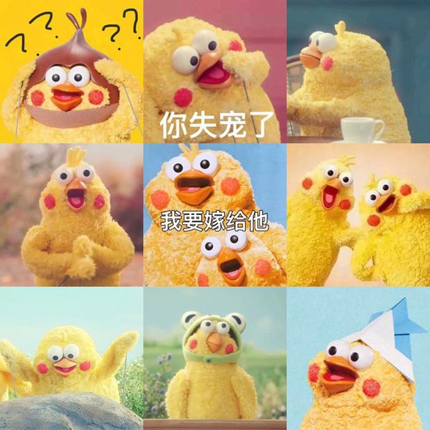 Meme chú gà Còn miếng lương tâm nào không? gây sốt MXH: Gia đình đông dân, không từ Trung Quốc cũng không phải... gà! - Ảnh 2.