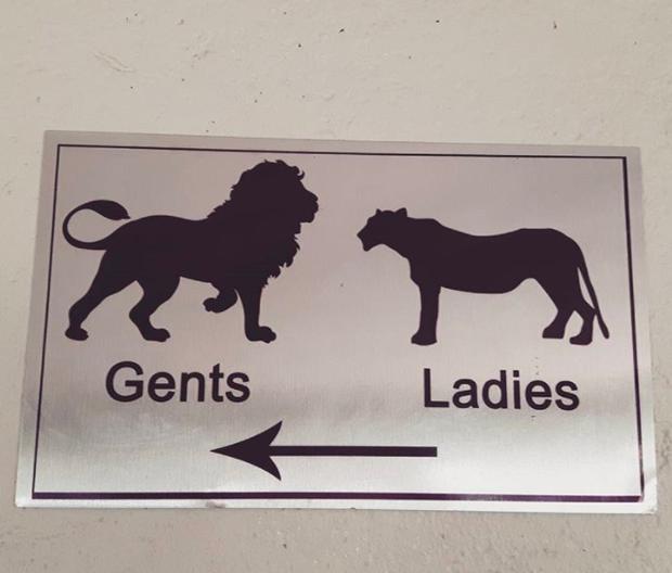 Những ý tưởng biển báo nhà vệ sinh công cộng não to của nhà thiết kế - Ảnh 16.