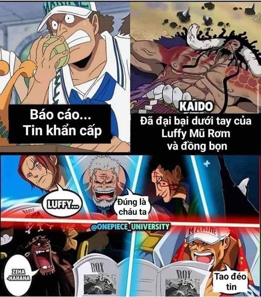 Cuối tuần cười bể bụng với loạt ảnh chế One Piece, thế mới thấy các fan bắt trend rất nhanh - Ảnh 11.