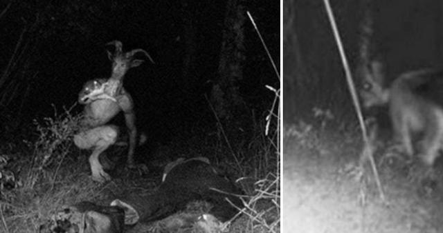 Những quái vật đáng sợ từng được đồn đại xuất hiện trong lịch sử loài người (P.2) - Ảnh 1.