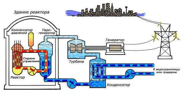 Điện hạt nhân an toàn hơn bạn nghĩ, thân thiện môi trường và không gây biến đổi khí hậu - Ảnh 2.