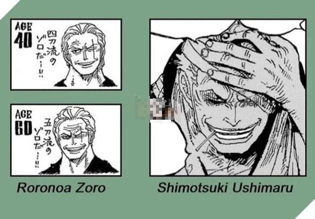 Bất ngờ với loạt meme cực đỉnh do fan One Piece tạo ra, gia thế kiếm sĩ băng Mũ Rơm là điều mong chờ nhất - Ảnh 2.