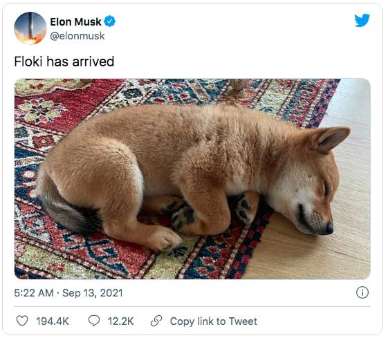Elon Musk lại làm phép trên trang cá nhân, một đồng coin tăng giá tới hơn 1.000% chỉ trong ít giờ - Ảnh 2.