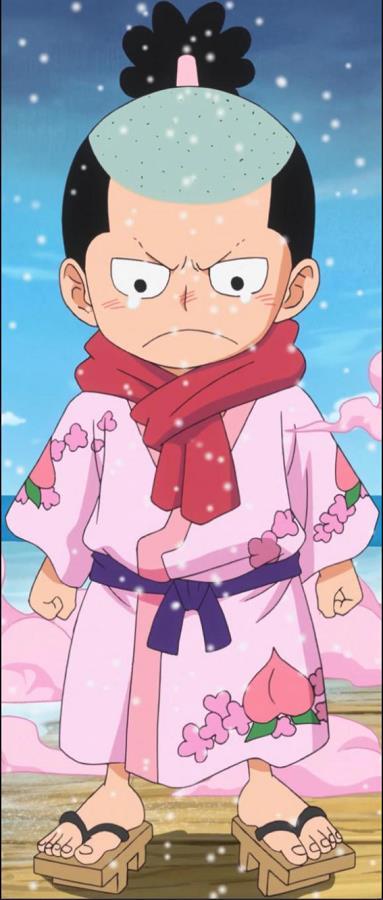 """Giả thuyết One Piece: Hiyori chính là """"chim trĩ"""" trong cậu bé quả đào thay vì Marco như chúng ta vẫn nghĩ? (P.2) - Ảnh 2."""
