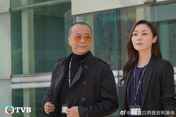 Ngày tàn của TVB đã tới: Để kẻ hiếp dâm đồi bại làm lãnh đạo, hàng loạt sao lớn trụ cột dứt áo ra đi? - Ảnh 2.