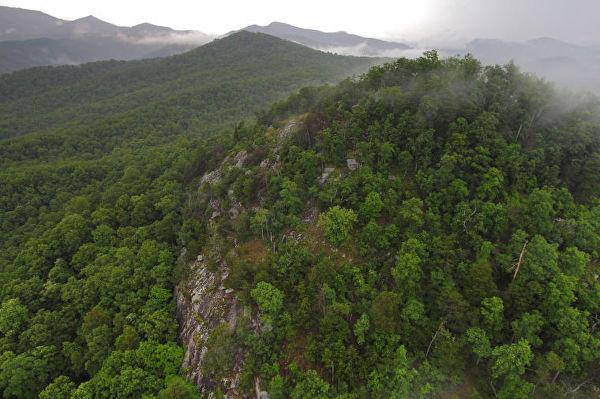 Khu đồi Box Creek nhìn từ trên cao.