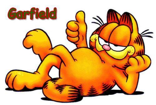 Mèo Garfield nổi tiếng là con mèo có những sở thích kỳ quái.