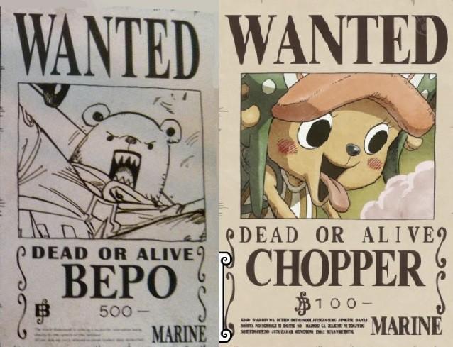 Nếu là fan One Piece, chắc chắn ai cũng từng thắc mắc về 4 mức truy nã bất thường và kỳ lạ nhất bộ truyện này - Ảnh 2.