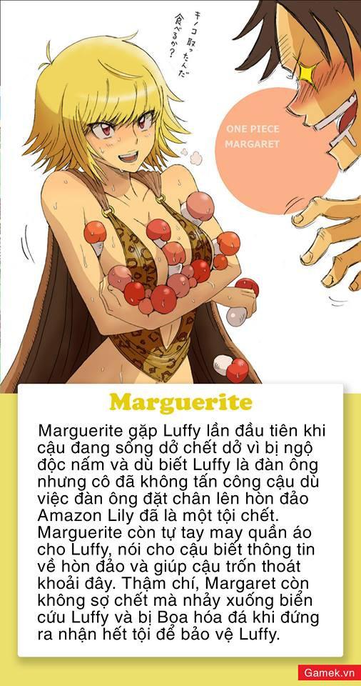One Piece: 5 mỹ nhân xinh đẹp được fan dự đoán sẽ trở thành vợ của Luffy, Vua Hải Tặc trong tương lai - Ảnh 3.