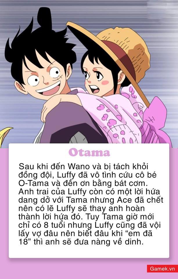 One Piece: 5 mỹ nhân xinh đẹp được fan dự đoán sẽ trở thành vợ của Luffy, Vua Hải Tặc trong tương lai - Ảnh 5.