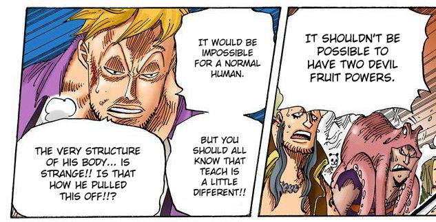 One Piece: Phượng Hoàng Marco có lẽ là người duy nhất biết về bí mật của Tứ Hoàng Blackbeard? - Ảnh 2.