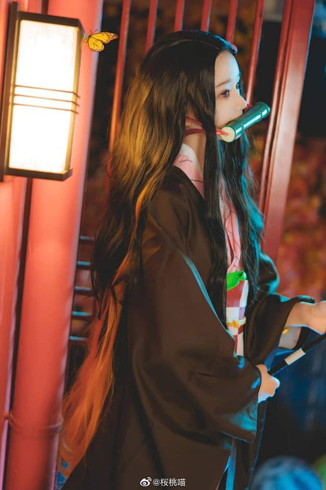 Ngắm nhìn Em gái quốc dân Nezuko trong Kimetsu no Yaiba qua bộ ảnh cosplay đẹp mắt - Ảnh 3.