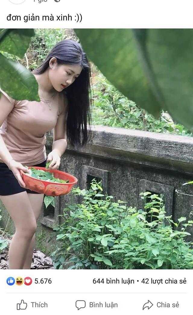 Chỉ ra vườn hái rau nấu canh, cô gái không ngờ mình bỗng nổi tiếng khắp mạng xã hội - Ảnh 1.