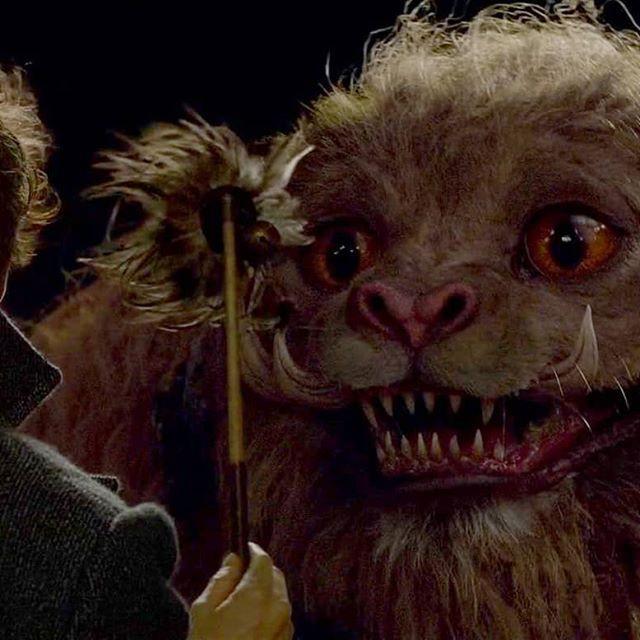 Zouwu - Sinh vật huyền bí bậc nhất trong thế giới Harry Potter - Ảnh 6.