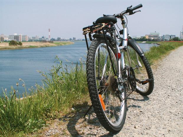 Cay cú vì bị ăn cắp mất yên xe đạp, người đàn ông phục thù bằng cách ăn trộm 159 cái yên khác cho bõ tức - Ảnh 1.