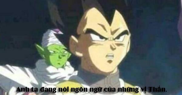 Dragon Ball: Phì cười khi xem loạt ảnh chế meme về hoàng tử Saiyan Vegeta - Ảnh 9.