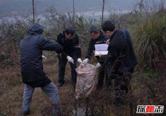 Kỳ án Trung Quốc (1): Vụ phanh thây 2000 mảnh của Điêu Ái Thanh, vì sao vẫn chưa phá được? - Ảnh 2.
