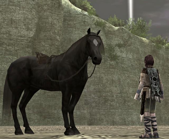 10 con Pet nổi tiếng nhất trong lịch sử video game - Ảnh 6.