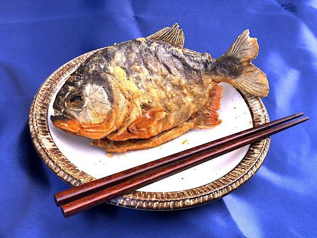 Khi mì Ramen kết hợp với loài cá ăn thịt Piranha: Giá 650k/bát, mỗi ngày chỉ bán 100 bát - Ảnh 4.