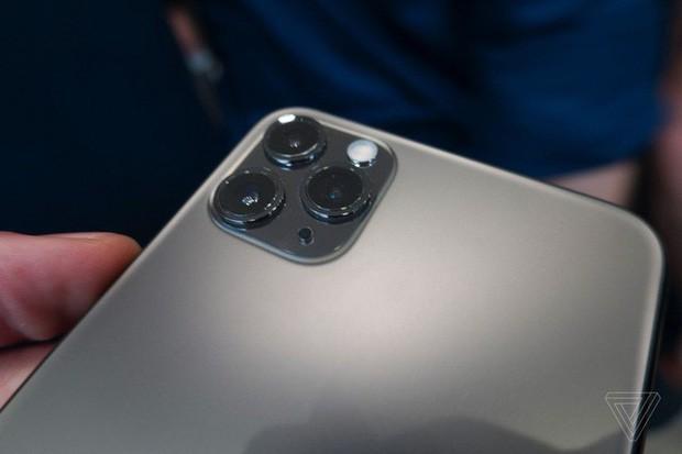 iPhone 11 vừa ló mặt đã dính 2 gáo nước lạnh siêu to, liên tục làm trò cười cho thiên hạ - Ảnh 1.