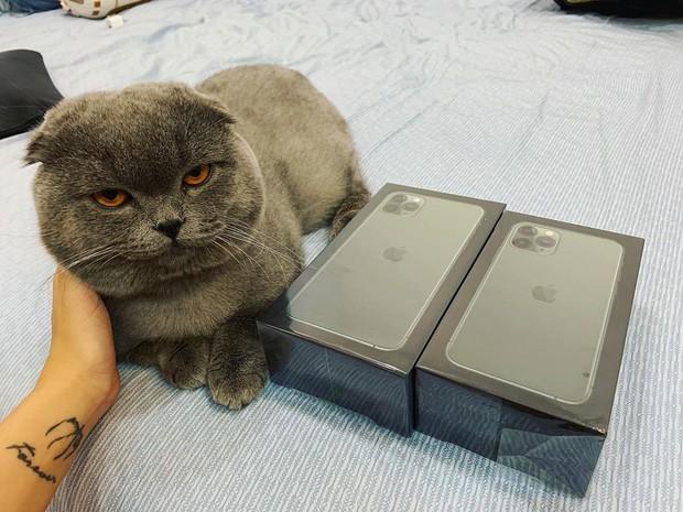 Linh Ngọc Đàm khoe được tặng iPhone 11 mới trình làng: Đúng là bạn trai nhà người ta chưa bao giờ làm chúng tôi thất vọng! - Ảnh 3.