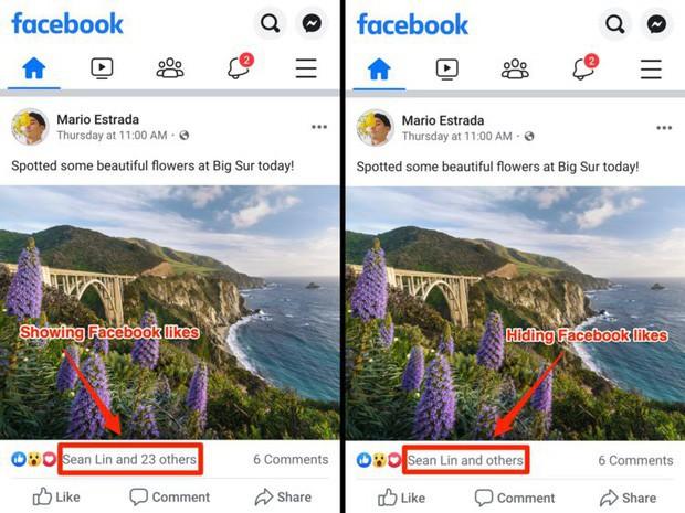 Hình ảnh đầu tiên về Facebook bỏ hiển thị số Like: Không còn khoe mẽ, chỉ hiện vài cái tên trơ trọi - Ảnh 1.