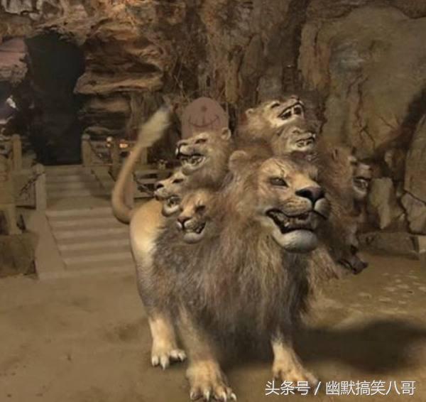 Tưởng thế nào, hóa ra pháp lực của Tôn Ngộ Không còn phải xách dép cho cả... thú cưng của Bồ Tát - Ảnh 6.