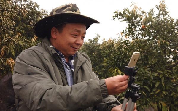 Đỉnh hơn bà Tân Vlog, lão nông Trung Quốc livestream một lần bán hết 1000 tấn cam - Ảnh 1.