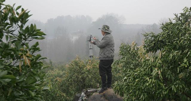 Đỉnh hơn bà Tân Vlog, lão nông Trung Quốc livestream một lần bán hết 1000 tấn cam - Ảnh 2.